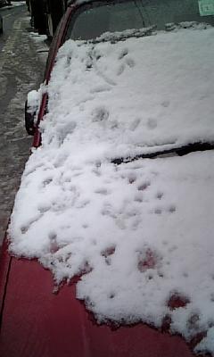日本全国雪だらけ